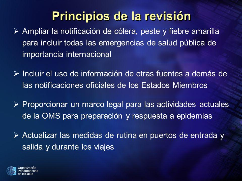 Principios de la revisión