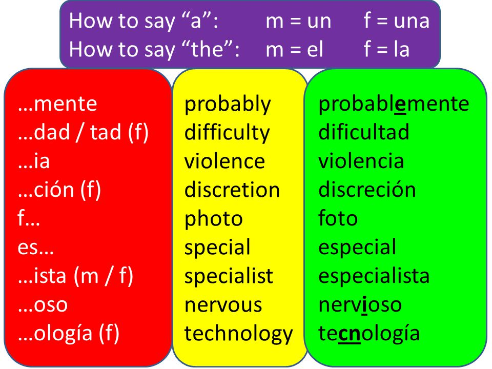 How to say a : m = un f = una