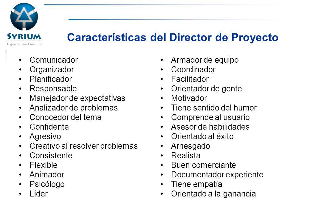 Características del Director de Proyecto