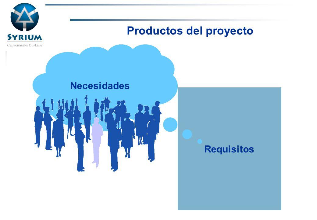 Productos del proyecto