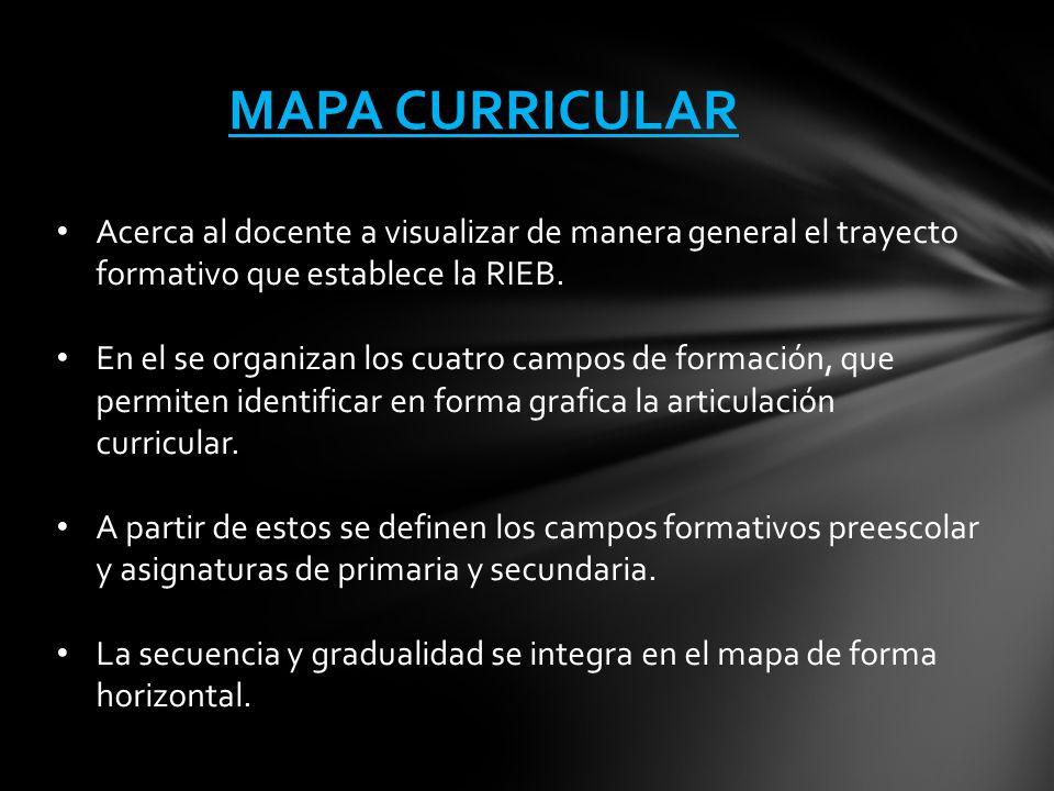 MAPA CURRICULAR Acerca al docente a visualizar de manera general el trayecto formativo que establece la RIEB.