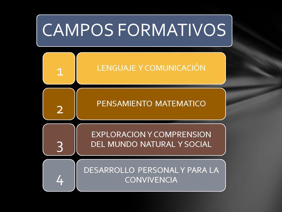 CAMPOS FORMATIVOS 1 2 3 4 LENGUAJE Y COMUNICACIÓN