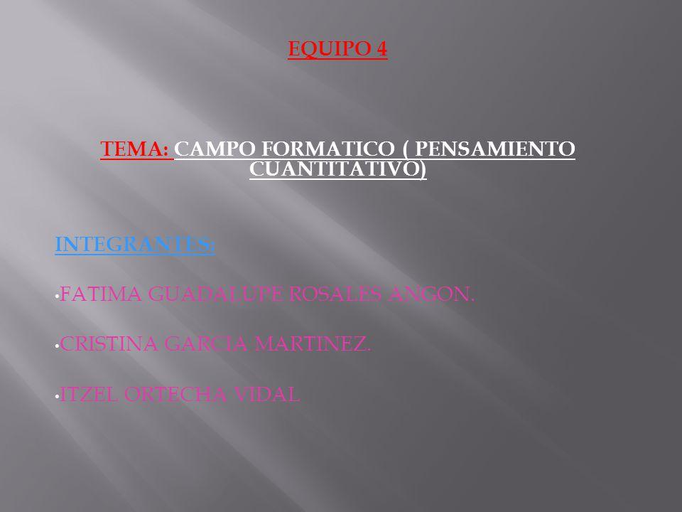 TEMA: CAMPO FORMATICO ( PENSAMIENTO CUANTITATIVO)