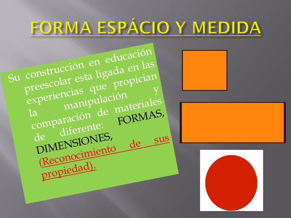 FORMA ESPÁCIO Y MEDIDA