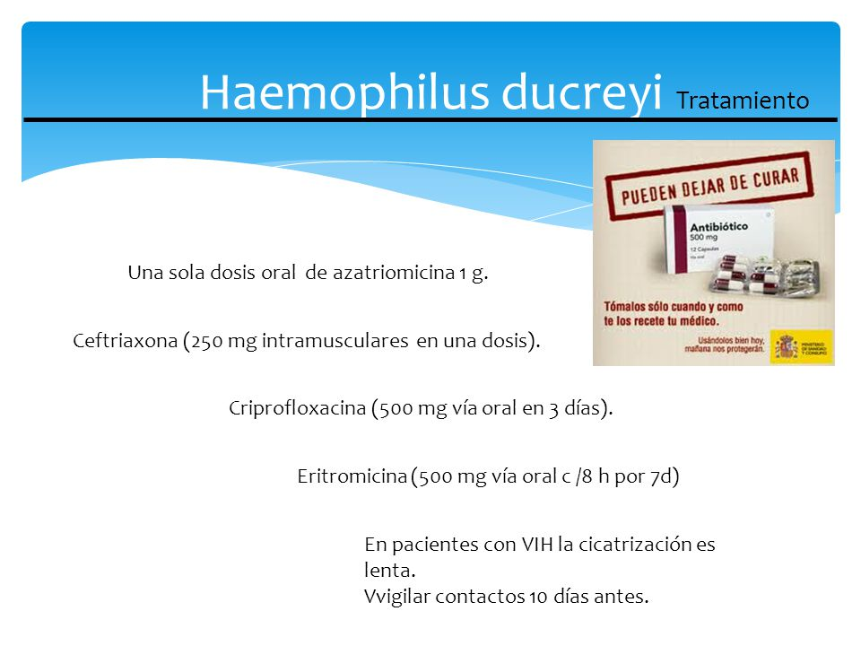 Haemophilus ducreyi Tratamiento