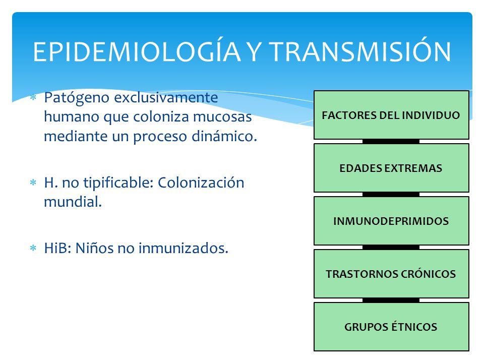 EPIDEMIOLOGÍA Y TRANSMISIÓN