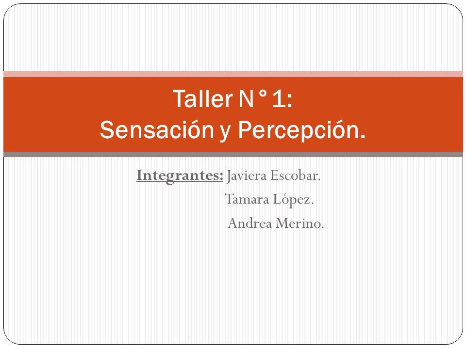 Taller N°1: Sensación y Percepción.