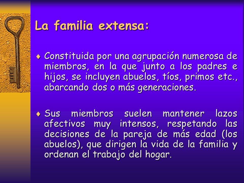 La familia extensa: