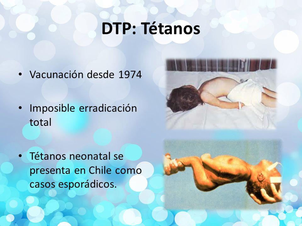 DTP: Tétanos Vacunación desde 1974 Imposible erradicación total