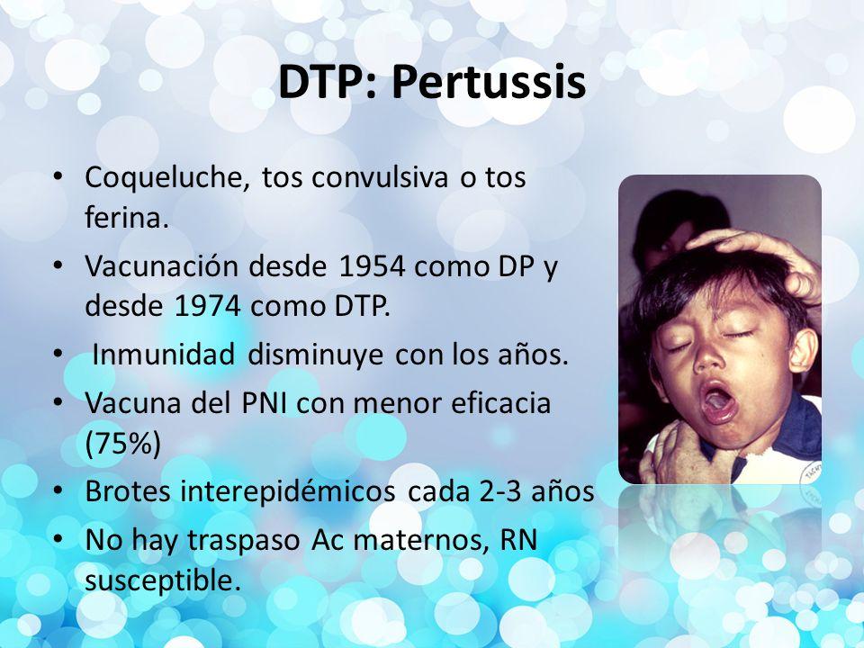 DTP: Pertussis Coqueluche, tos convulsiva o tos ferina.