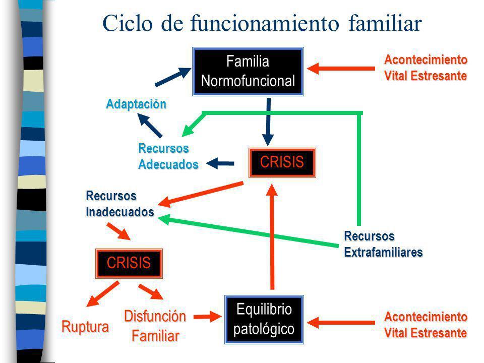 Ciclo de funcionamiento familiar