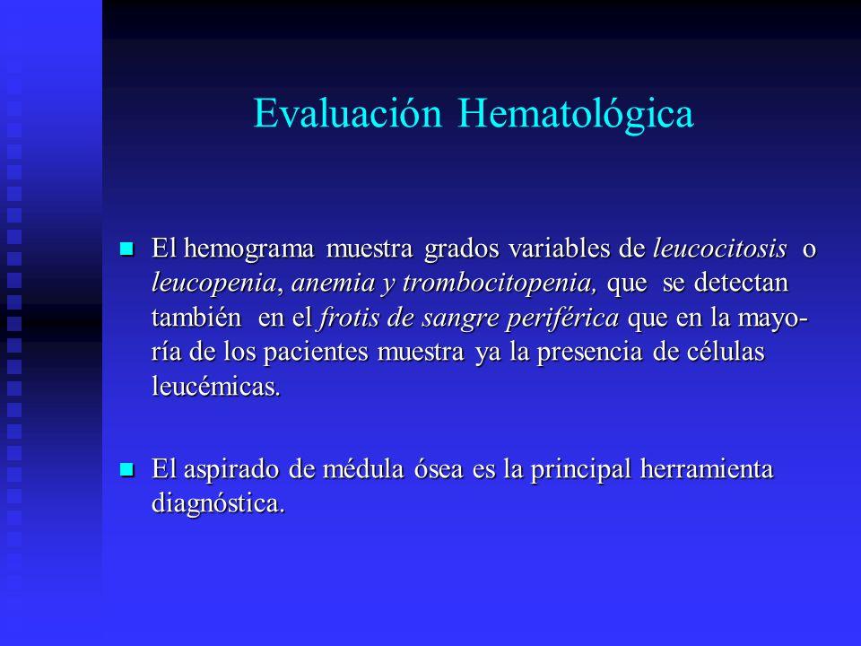 Evaluación Hematológica
