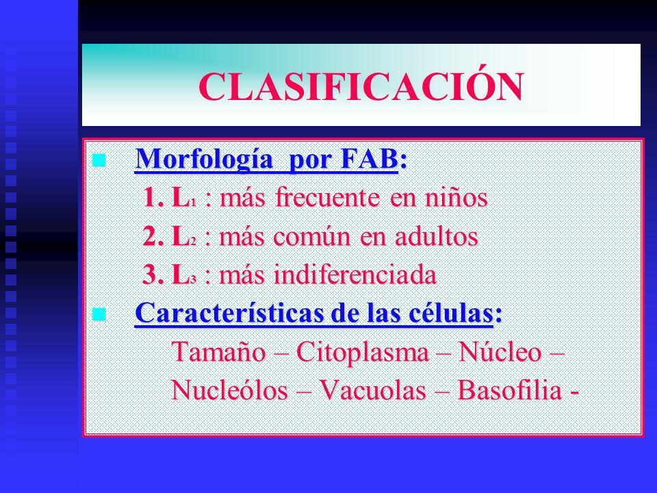 CLASIFICACIÓN Morfología por FAB: 1. L1 : más frecuente en niños