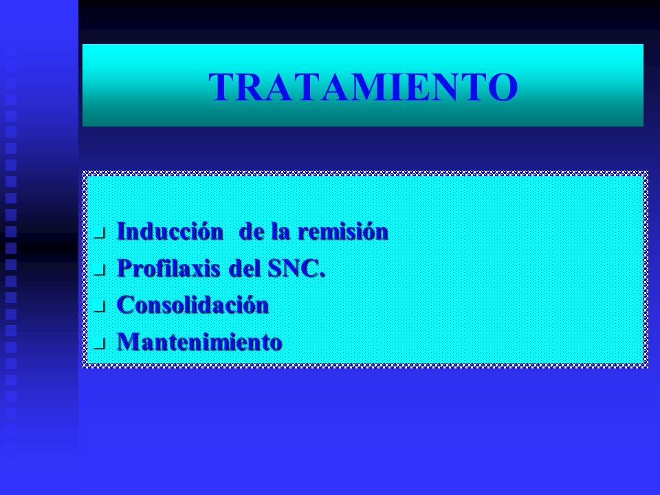 TRATAMIENTO Inducción de la remisión Profilaxis del SNC. Consolidación