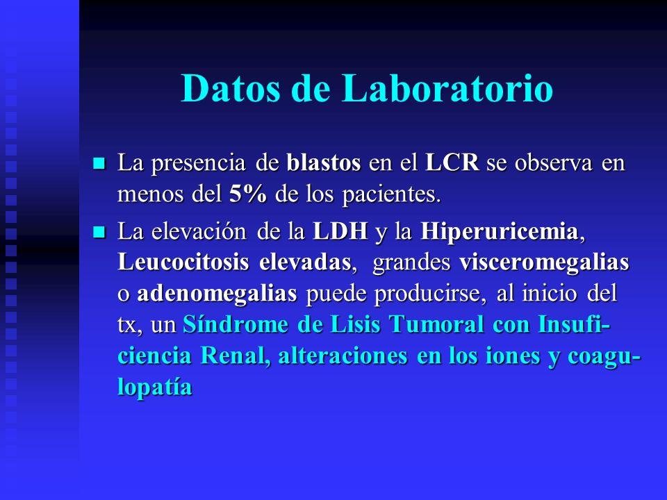 Datos de Laboratorio La presencia de blastos en el LCR se observa en menos del 5% de los pacientes.