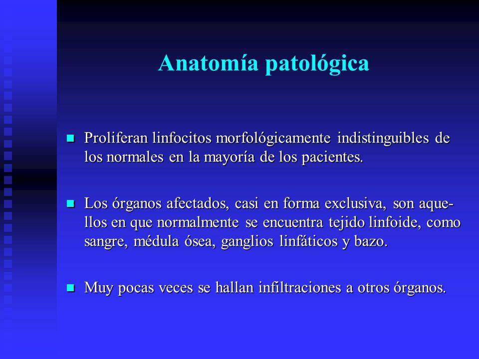 Anatomía patológica Proliferan linfocitos morfológicamente indistinguibles de los normales en la mayoría de los pacientes.