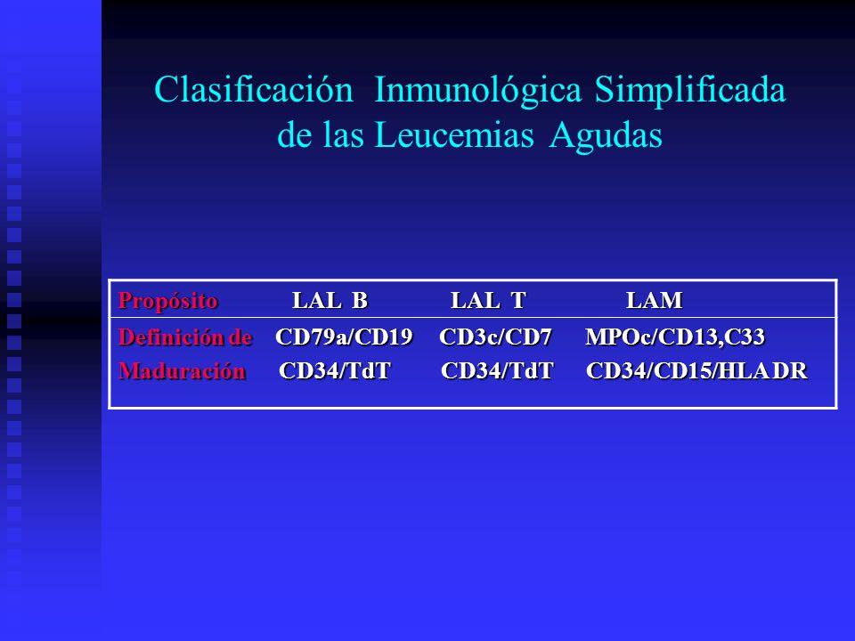 Clasificación Inmunológica Simplificada de las Leucemias Agudas