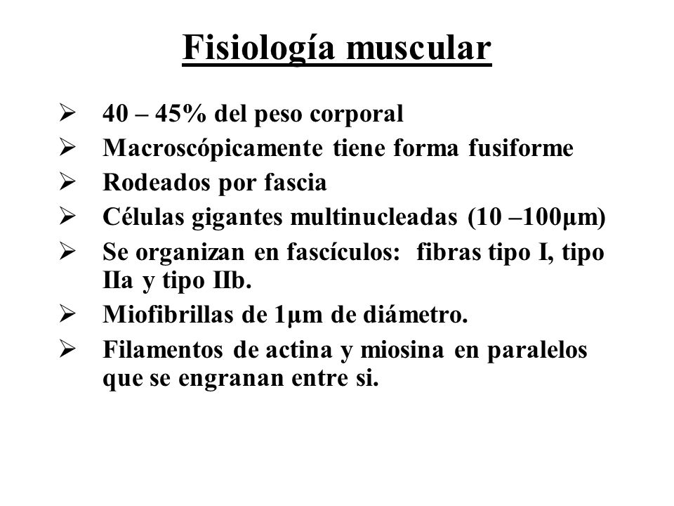 Fisiología muscular 40 – 45% del peso corporal