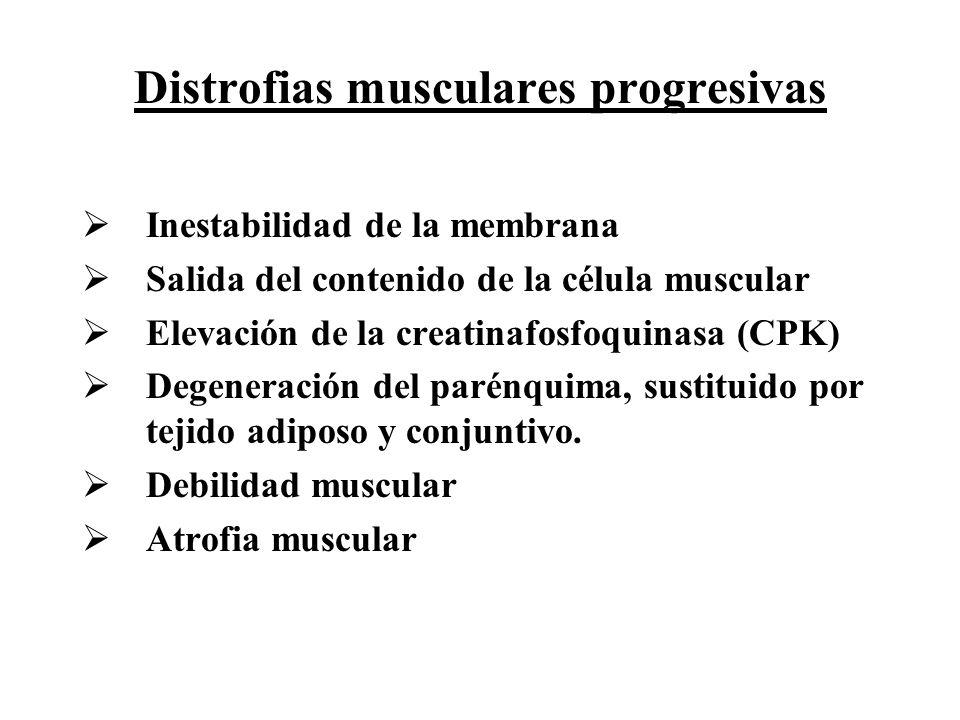Distrofias musculares progresivas
