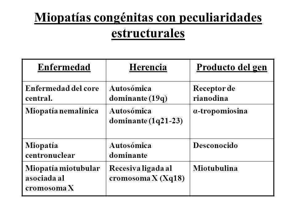 Miopatías congénitas con peculiaridades estructurales