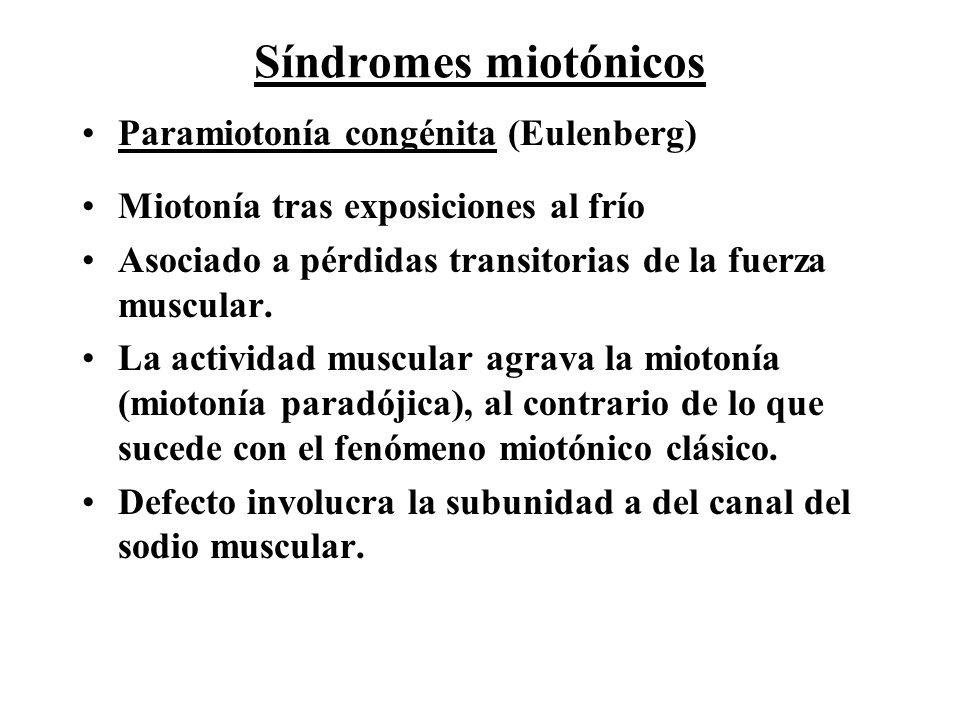 Síndromes miotónicos Paramiotonía congénita (Eulenberg)