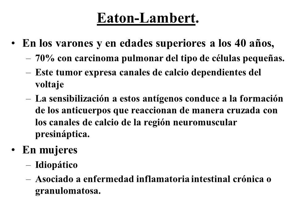 Eaton-Lambert. En los varones y en edades superiores a los 40 años,