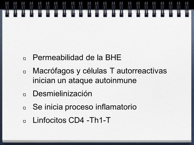 Permeabilidad de la BHE