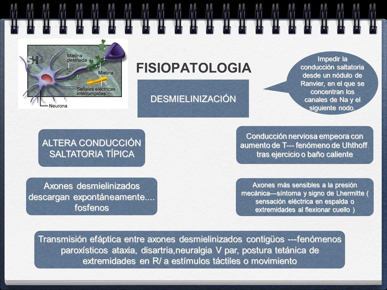 FISIOPATOLOGIA DESMIELINIZACIÓN ALTERA CONDUCCIÓN SALTATORIA TÍPICA
