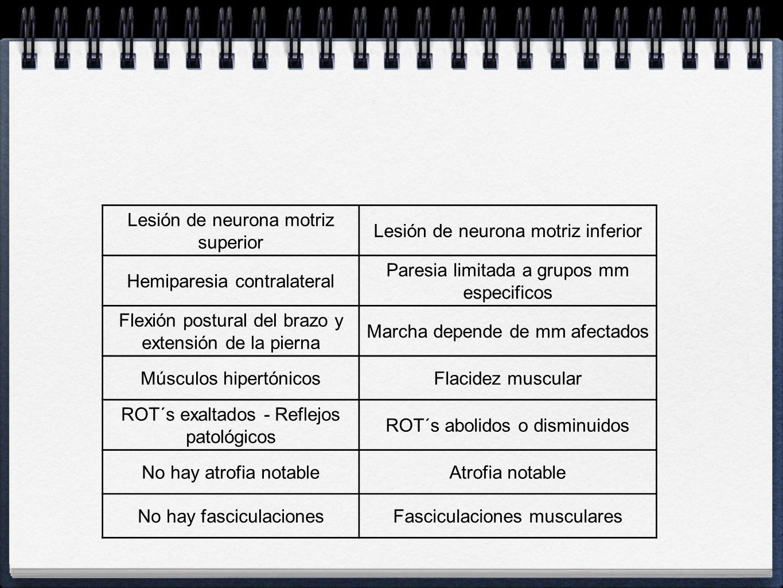 Lesión de neurona motriz superior Lesión de neurona motriz inferior