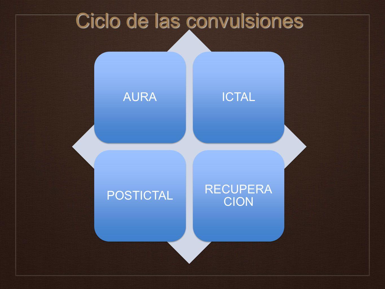 Ciclo de las convulsiones
