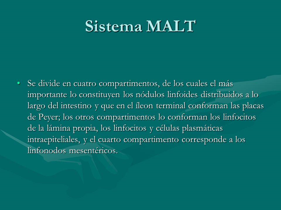 Sistema MALT