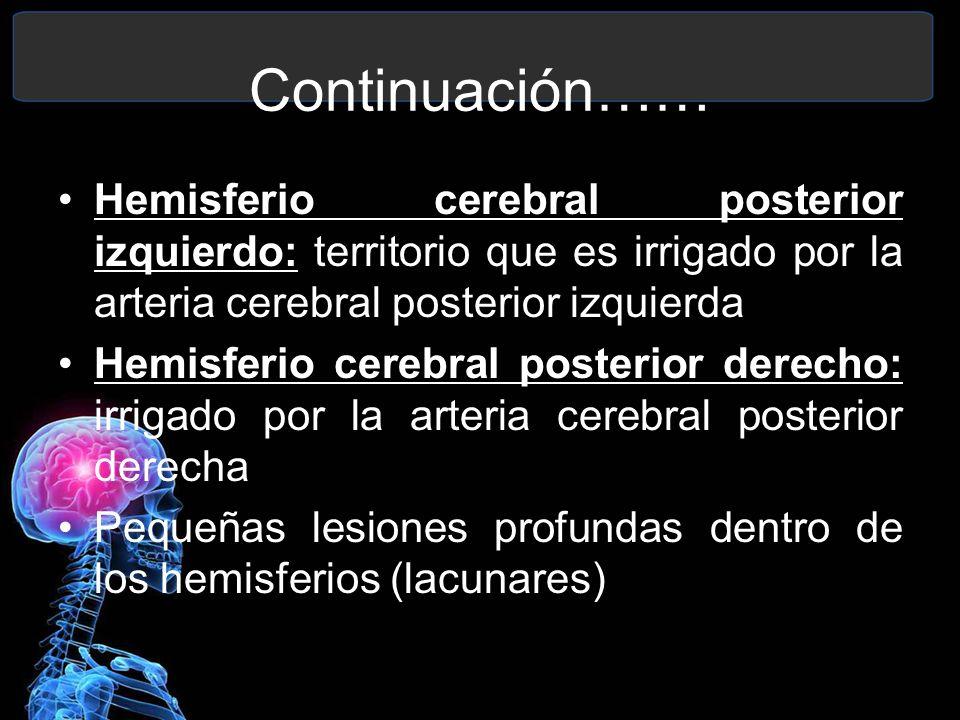 Continuación…… Hemisferio cerebral posterior izquierdo: territorio que es irrigado por la arteria cerebral posterior izquierda.