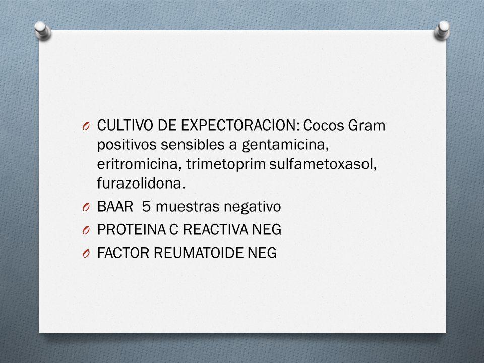 CULTIVO DE EXPECTORACION: Cocos Gram positivos sensibles a gentamicina, eritromicina, trimetoprim sulfametoxasol, furazolidona.