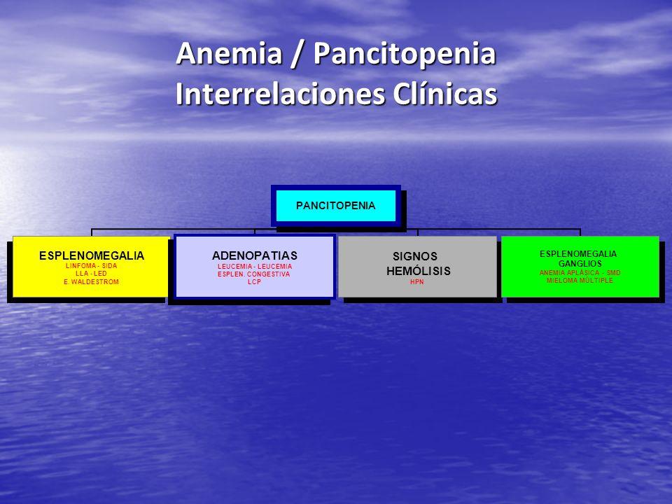 Anemia / Pancitopenia Interrelaciones Clínicas