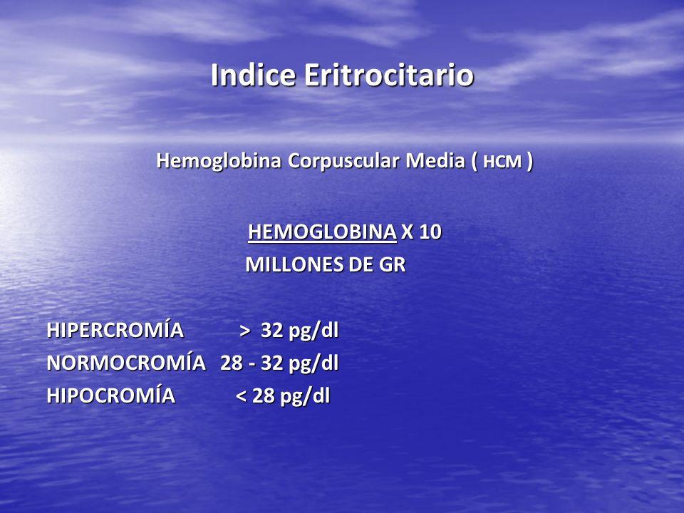 Hemoglobina Corpuscular Media ( HCM )