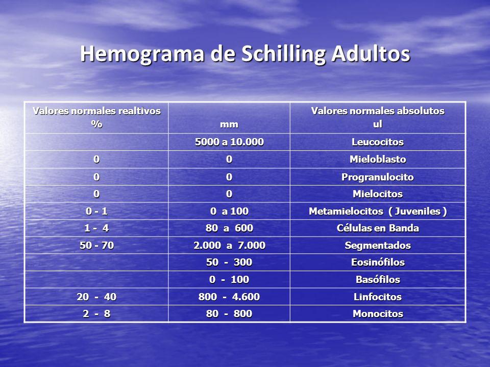 Hemograma de Schilling Adultos