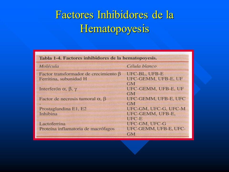 Factores Inhibidores de la Hematopoyesis