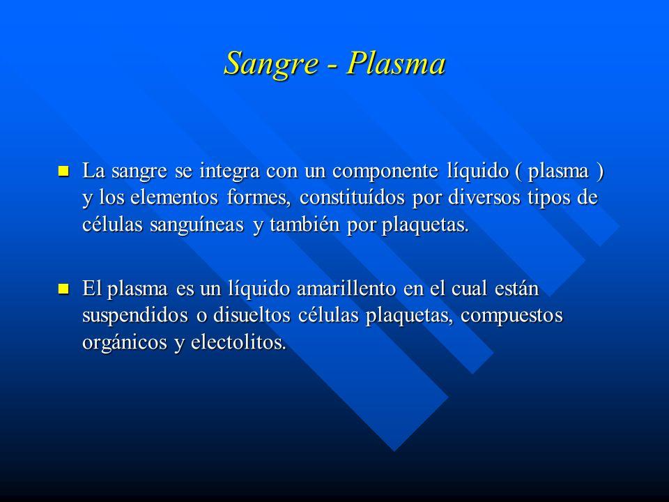 Sangre - Plasma