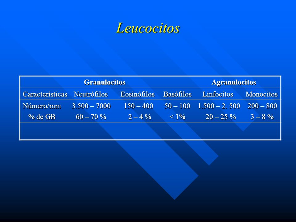 Leucocitos Granulocitos Agranulocitos