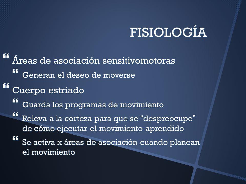 FISIOLOGÍA Áreas de asociación sensitivomotoras Cuerpo estriado