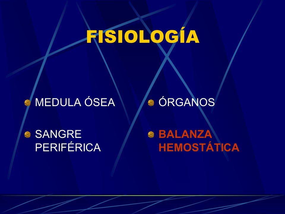 FISIOLOGÍA MEDULA ÓSEA SANGRE PERIFÉRICA ÓRGANOS BALANZA HEMOSTÁTICA
