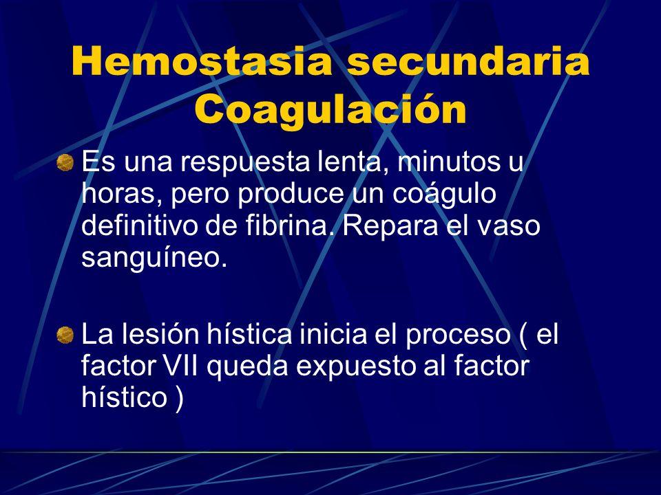 Hemostasia secundaria Coagulación