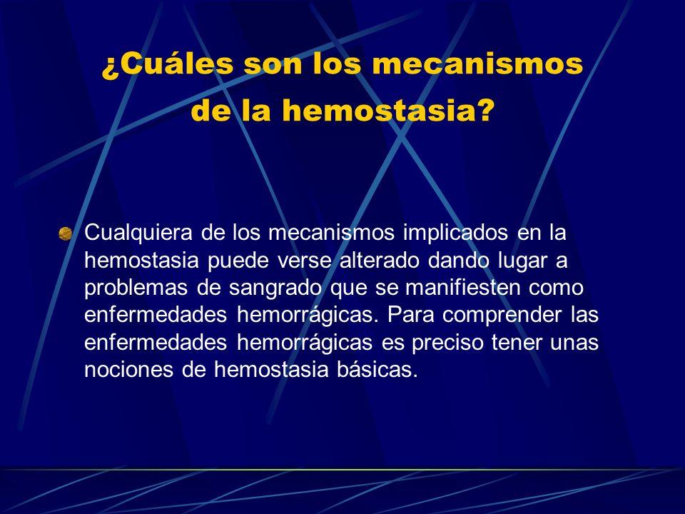 ¿Cuáles son los mecanismos de la hemostasia