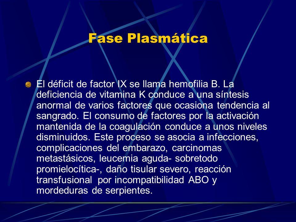 Fase Plasmática