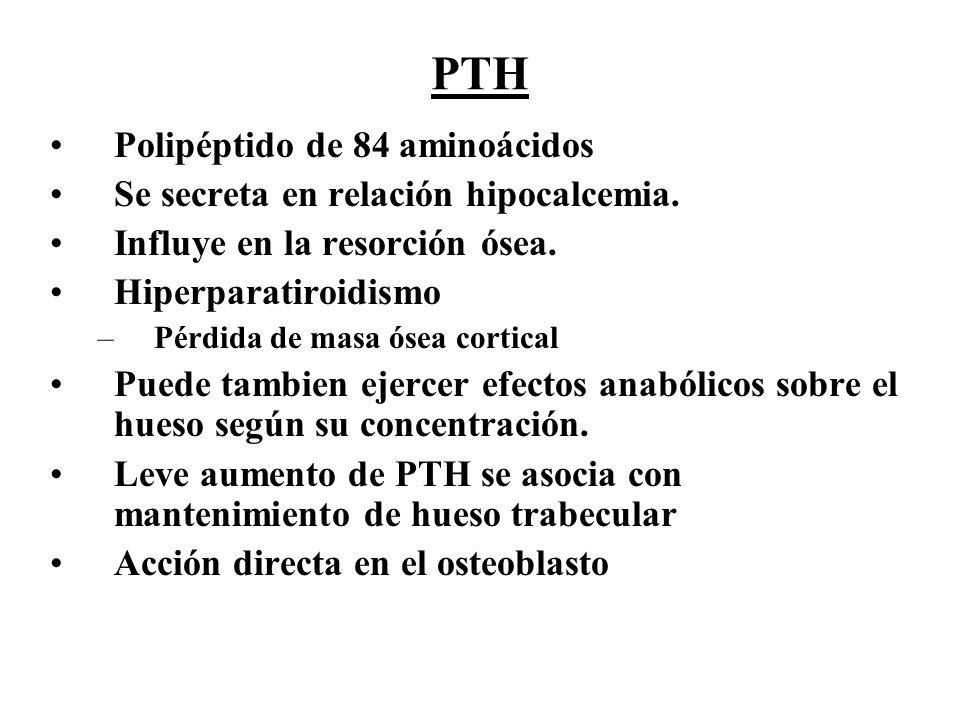 PTH Polipéptido de 84 aminoácidos Se secreta en relación hipocalcemia.
