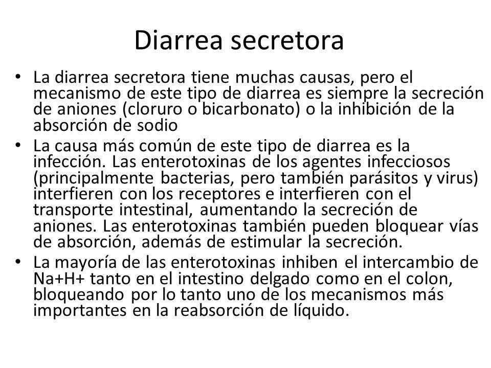 Diarrea secretora