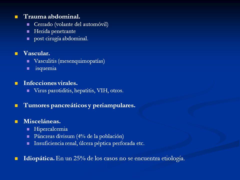 Tumores pancreáticos y periampulares. Misceláneas.