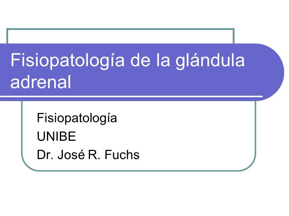 Fisiopatología de la glándula adrenal