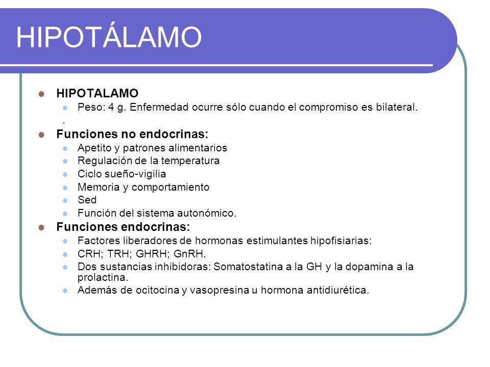 HIPOTÁLAMO HIPOTALAMO Funciones no endocrinas: Funciones endocrinas: