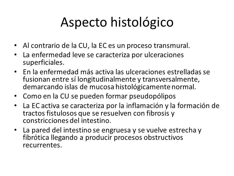 Aspecto histológico Al contrario de la CU, la EC es un proceso transmural. La enfermedad leve se caracteriza por ulceraciones superficiales.